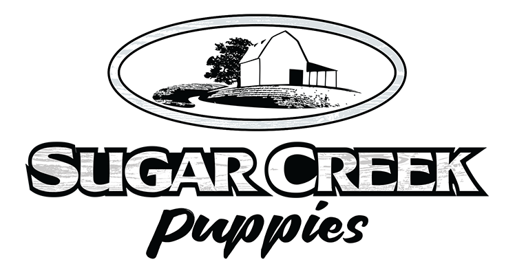 Sugar Creek Puppies